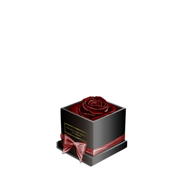 akrylbox-burgundy